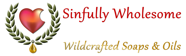 sinfully-whoesome-logo-750X225
