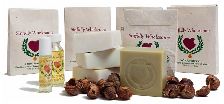 sinfully-whoesome-products-750X350